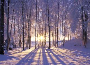 solsticio-de-invierno-cambio-de-etapa